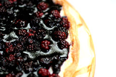 Blackberry pie Royalty Free Stock Photography