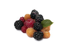 Blackberry, röda och gula hallon på vit bakgrund Arkivfoton