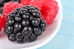 Blackberry and raspberries on white plate. Closeup on blue mat Stock Images