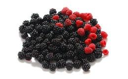 Blackberry and raspberry stock image