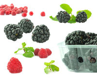 Blackberry and raspberry. Berries on white background. blackberry and raspberry royalty free stock photography