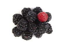 Blackberry and raspberry Stock Images
