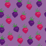 Blackberry and raspberry Royalty Free Stock Photo