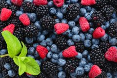 Blackberry, raspberry, blueberry and mint background. Top view. Top view stock image