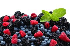 Blackberry, raspberry, blueberry and mint background. Blackberry, raspberry, blueberry and mint . Top view. Top view royalty free stock photography