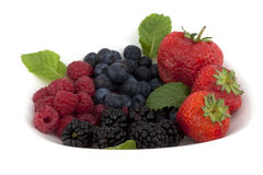 Blackberry, raspberry, cranberry, strawberry Stock Photos