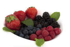 Blackberry, raspberry, cranberry, strawberry Royalty Free Stock Photo