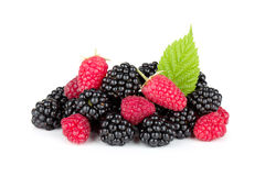 Blackberry and raspberry. Isolated on white background royalty free stock photography