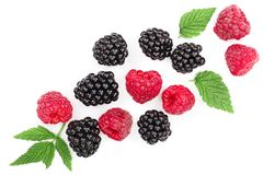 Blackberry and raspberry with leaves isolated on white background with copy space for your text. Top view. Flat lay. Pattern stock image
