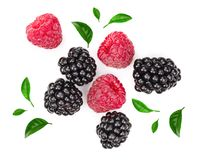 Blackberry and raspberry with leaves isolated on white background. Top view. Flat lay pattern.  stock photos