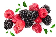 Blackberry and raspberry with leaves isolated on white background. Top view. Flat lay pattern.  royalty free stock photography