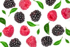 Blackberry and raspberry with leaves isolated on white background. Top view. Flat lay pattern stock image