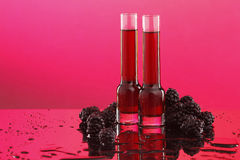 Blackberry or raspberry liquor/wine Royalty Free Stock Image