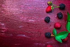 Blackberry and raspberry on red wooden background. Top view. Frame. Flat lay.  Stock Photo