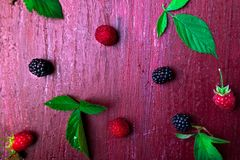 Blackberry and raspberry on red wooden background. Top view. Frame. Flat lay.  Royalty Free Stock Image