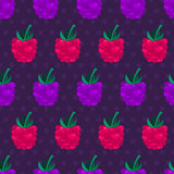 Blackberry and raspberry seamless pattern. Vector nature backgro Royalty Free Stock Photos