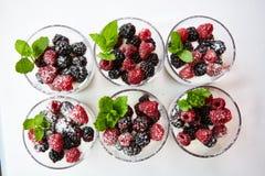 Blackberry and raspberry in the white yogurt. Royalty Free Stock Photos
