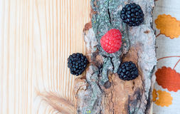 Blackberry, raspberry on wood, card Royalty Free Stock Images