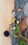 Blackberry, raspberry on wood, card Royalty Free Stock Photo