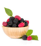 Blackberry and raspberry Stock Photography