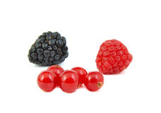 Blackberry, red currants and raspberry on white Royalty Free Stock Image