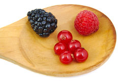 Blackberry, red currants and raspberry in a wooden Stock Photo