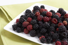 Blackberry and redberry Royalty Free Stock Photography