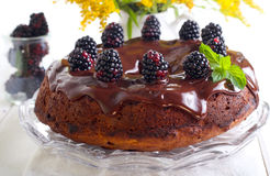Blackberry ring cake. With chocolate icing and berries Royalty Free Stock Photo