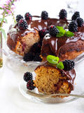Blackberry ring cake. With chocolate icing and berries Stock Photography