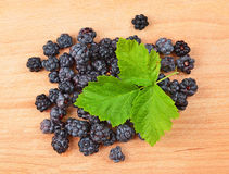 Blackberry (rubus) on woooden background Stock Photos