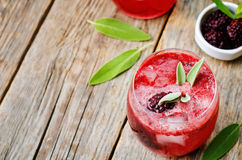 Blackberry sage cooler Royalty Free Stock Photography