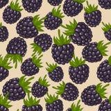 Blackberry seamless pattern Royalty Free Stock Photography