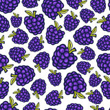 Blackberry seamless pattern. Vector doodle berry design for wallpaper, web page background, wrapping, packaging, textile Royalty Free Stock Images