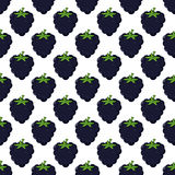 Blackberry Seamless Pattern on White Royalty Free Stock Images