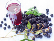 Blackberry smoothie Stock Images