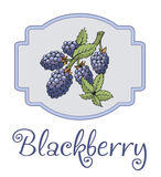Blackberry sticker with branch and leaves Stock Photo