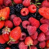 Blackberry strawberry Stock Photo