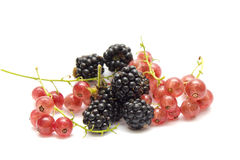 The blackberry and summer season fruit Stock Photography