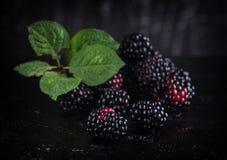 Blackberry sur le fond noir photo stock