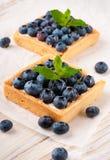 Blackberry tart Royalty Free Stock Image