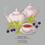 Blackberry tea vector illustration Royalty Free Stock Photos