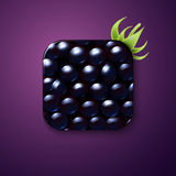 Blackberry texture icon stylized like mobile app. Vector illustr Royalty Free Stock Photos