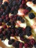 Blackberry und Apfel stockbilder