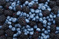 Blackberry- und Blaubeerhintergrund Beschneidungspfad eingeschlossen lizenzfreie stockfotografie