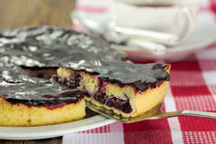 Blackberry vanilla custard tart Royalty Free Stock Image