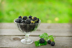 Blackberry in vase on wooden table Royalty Free Stock Images