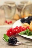 Blackberry w łyżce Fotografia Stock
