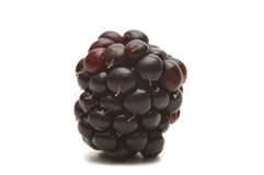 Blackberry on white background Stock Images