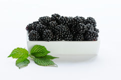 Blackberry in a white dish - white background Stock Photography