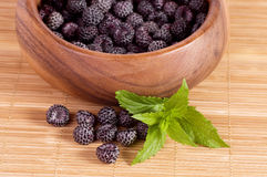 Blackberry in wooden bowl. Photo for a design Stock Photo